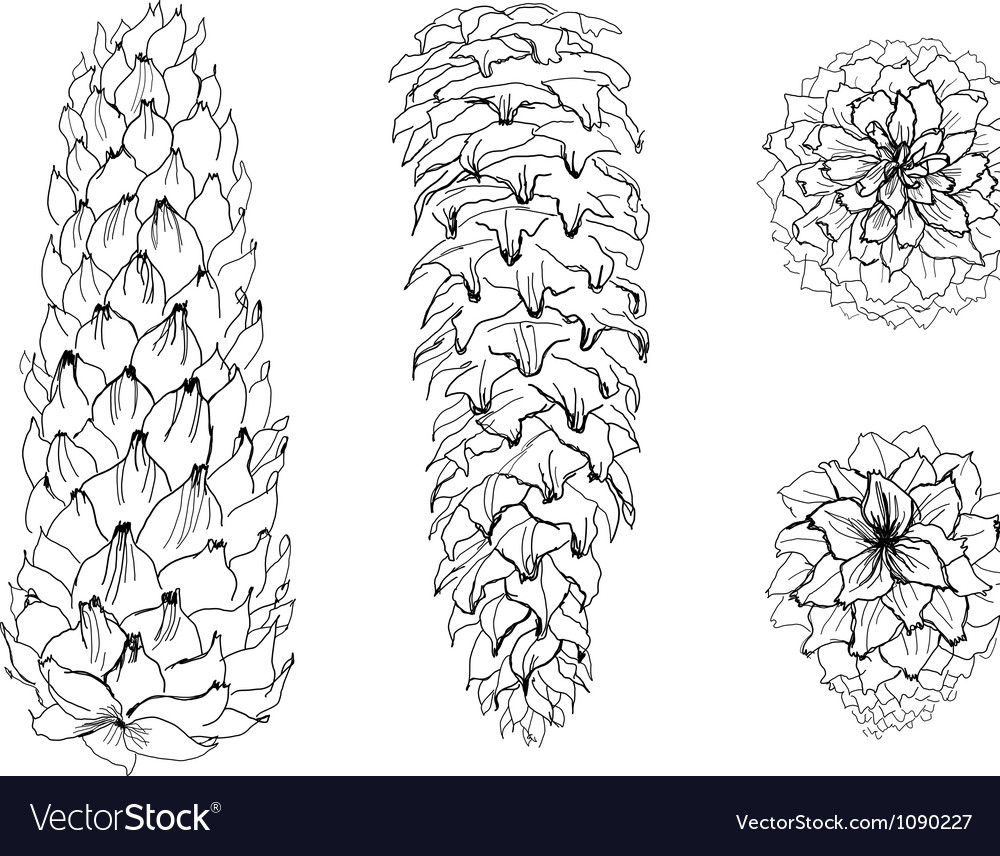 Cones collection vector | Price: 1 Credit (USD $1)