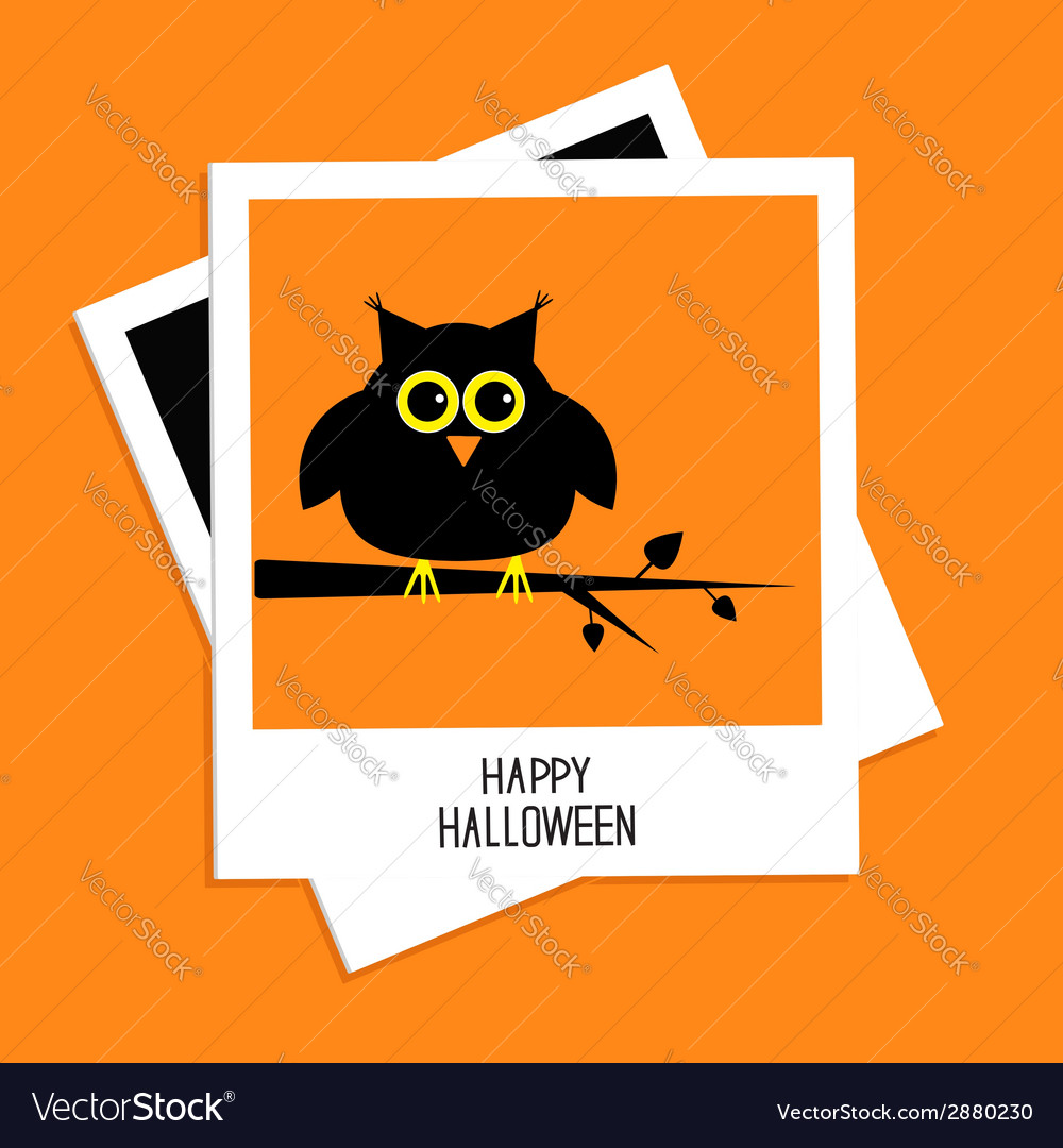 Instant photo with owl happy halloween card flat vector | Price: 1 Credit (USD $1)