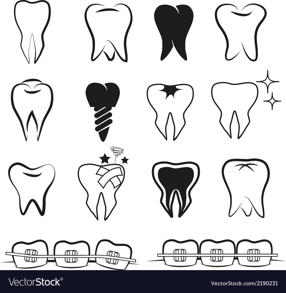 Set of teeth on white black ground vector | Price: 1 Credit (USD $1)