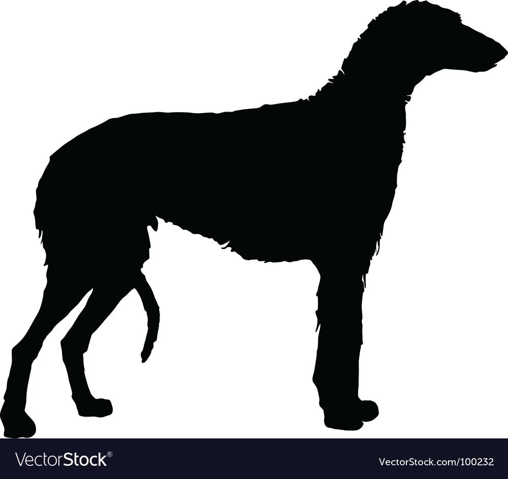 Scottish deerhound vector | Price: 1 Credit (USD $1)