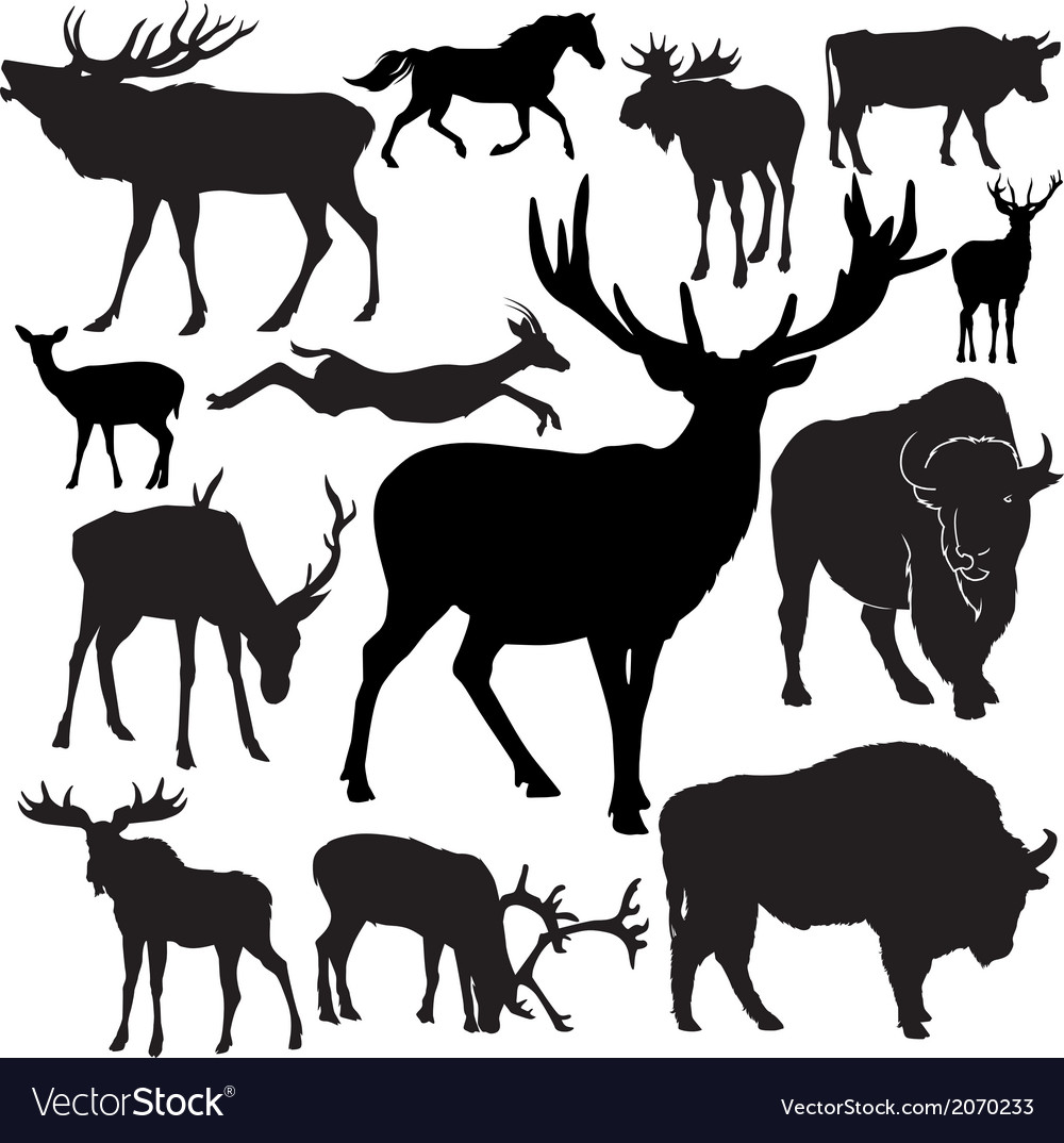 Hoofed animals vector | Price: 1 Credit (USD $1)