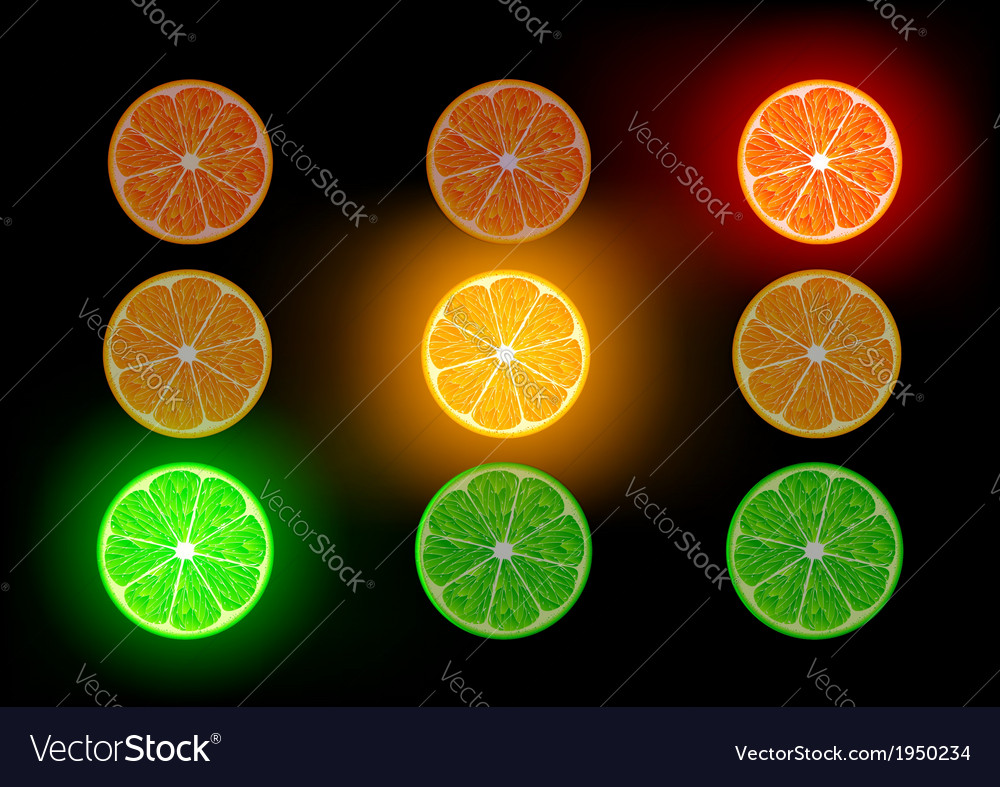 Orange lime and grapefruit vector | Price: 1 Credit (USD $1)