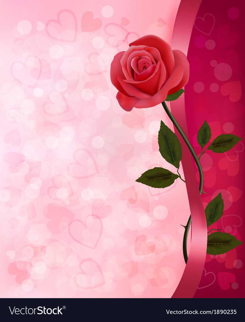 Holiday background with red rose and ribbon vector | Price: 1 Credit (USD $1)