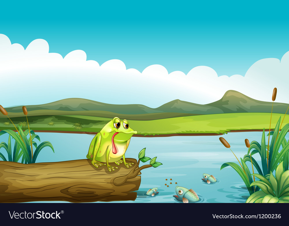 The lonely frog vector | Price: 1 Credit (USD $1)