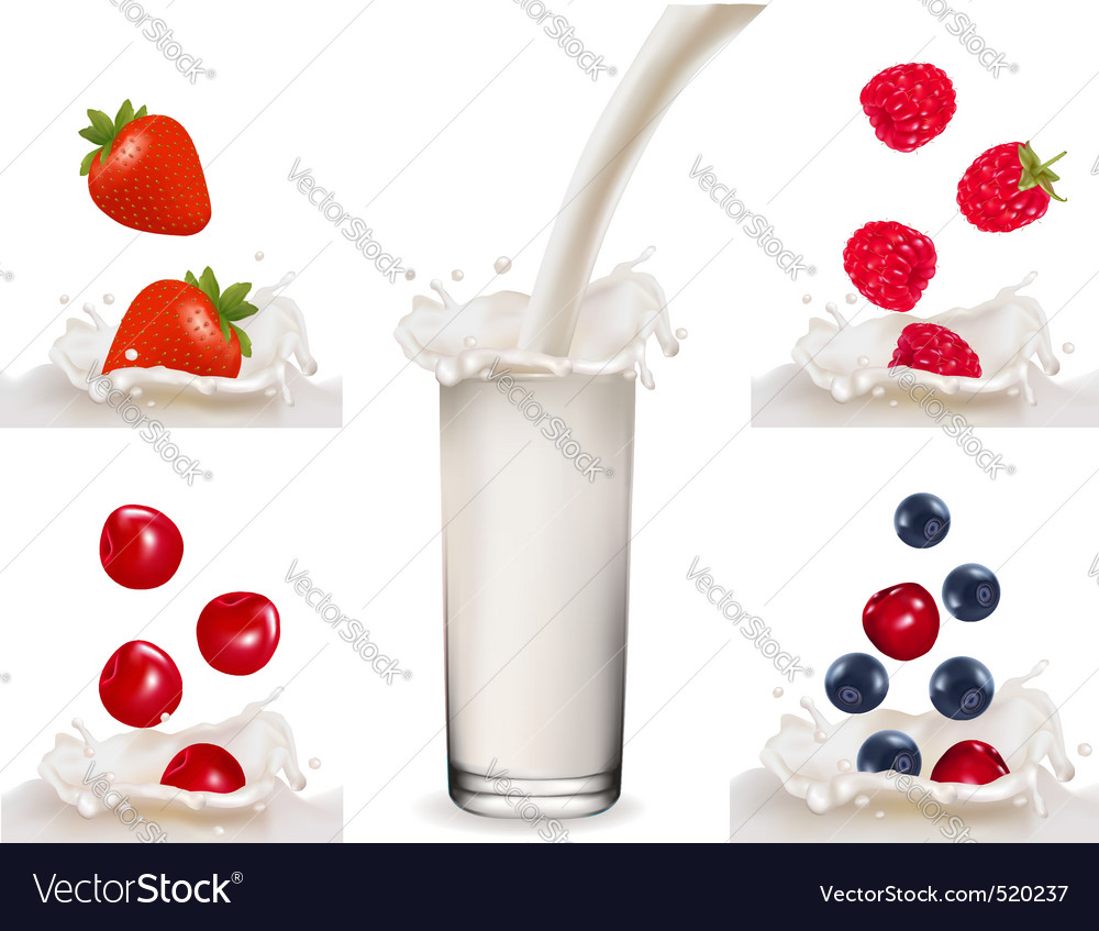 Big set with berry with milk and milk vector | Price: 1 Credit (USD $1)