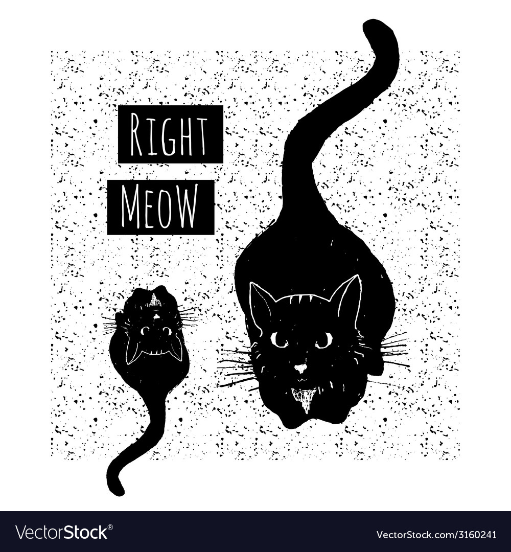 Hand drawn card with cute black cats on seamless vector | Price: 1 Credit (USD $1)