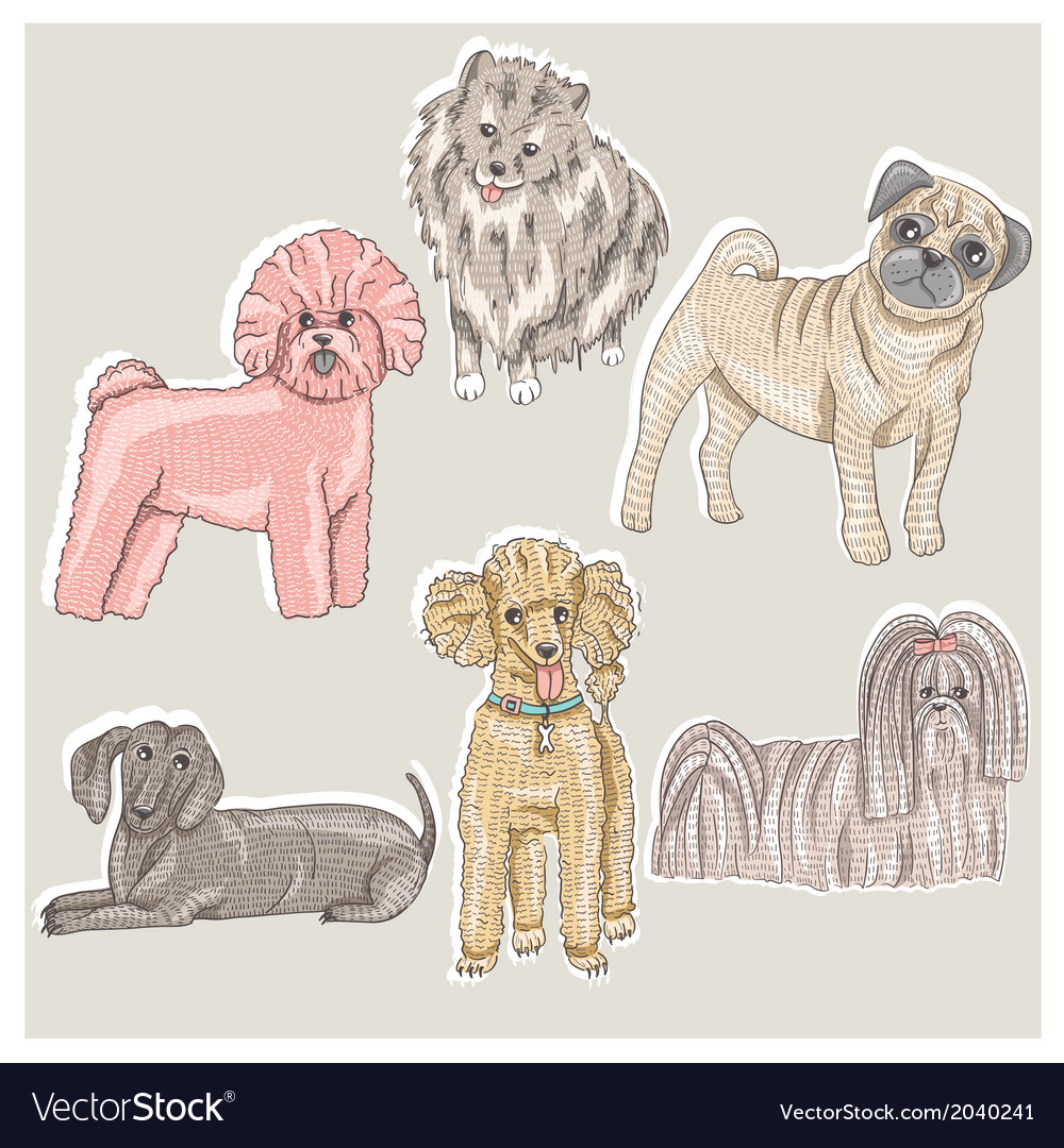 Set of cute little breed dogs vector | Price: 1 Credit (USD $1)