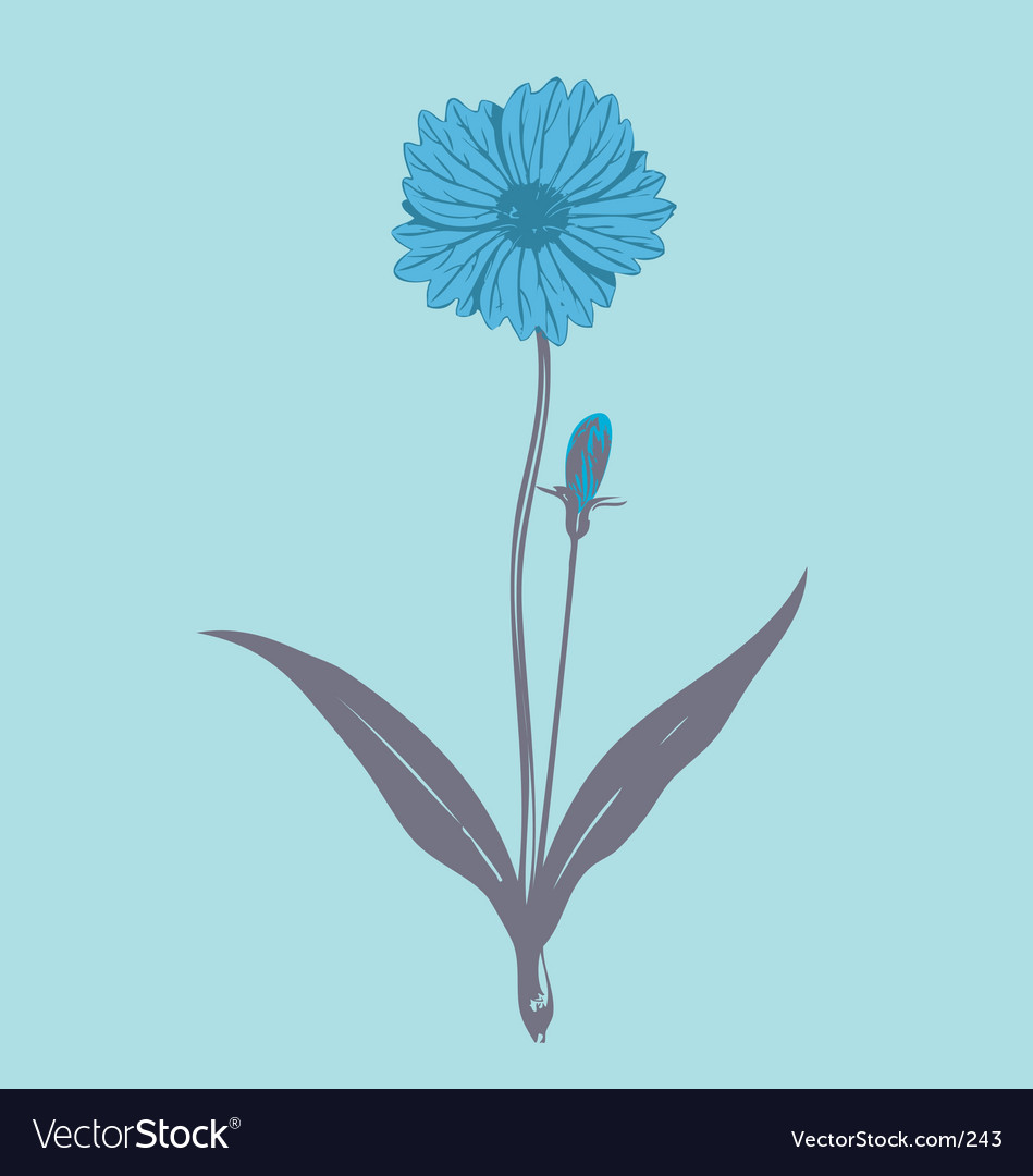 Flower illustration vector | Price: 1 Credit (USD $1)