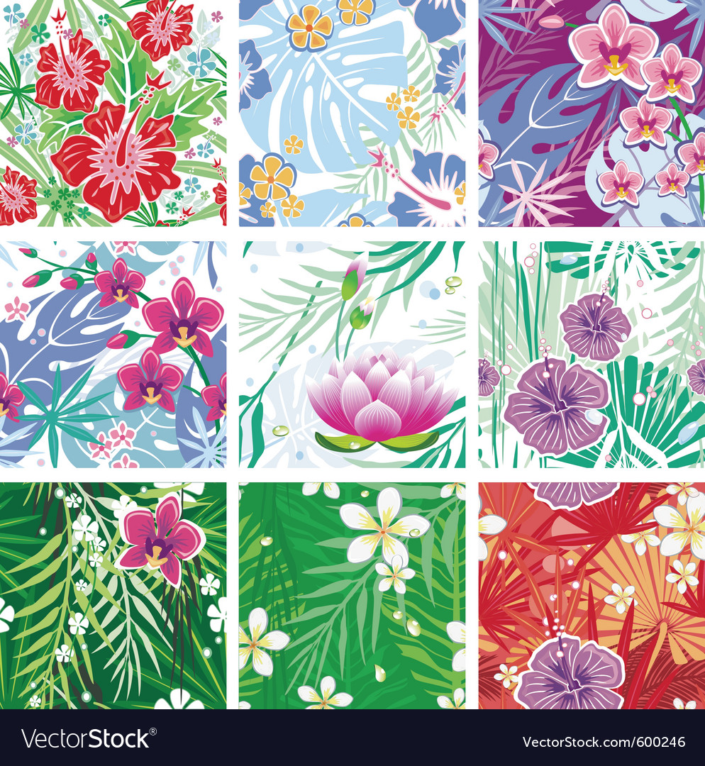 Set of seamless floral pattern vector | Price: 3 Credit (USD $3)