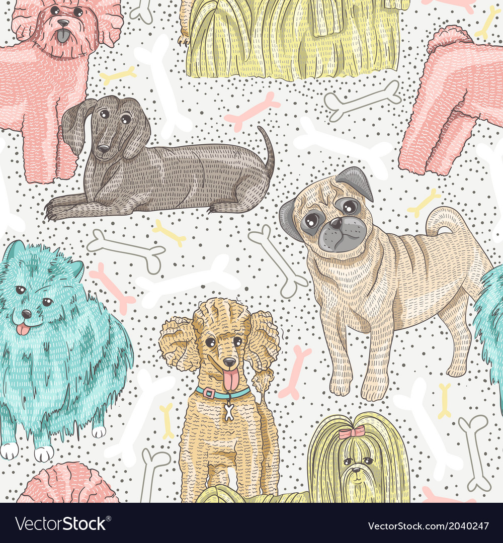 Cute seamless pattern with little breed dogs vector