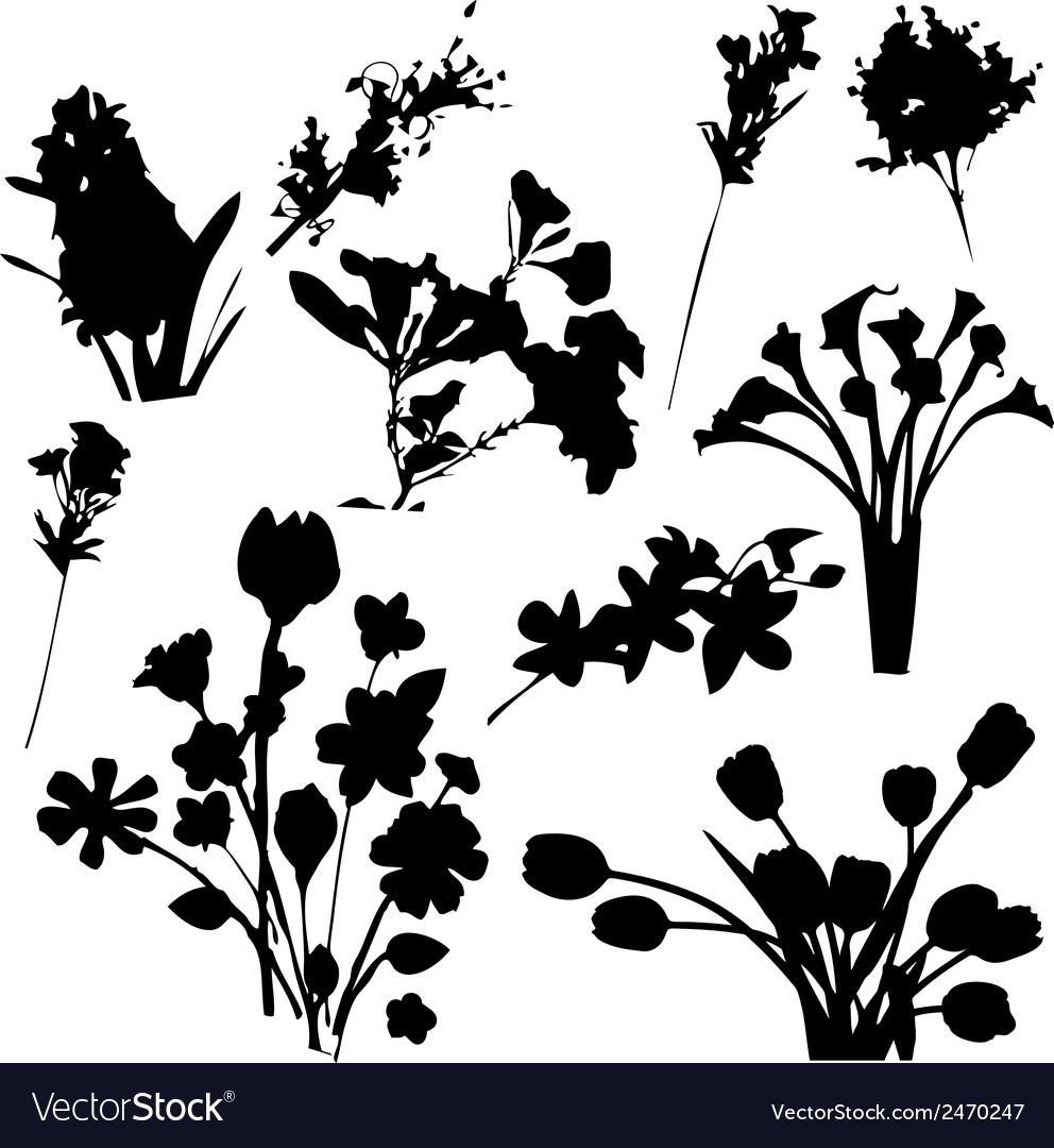 Flowers silhouettes vector | Price: 1 Credit (USD $1)