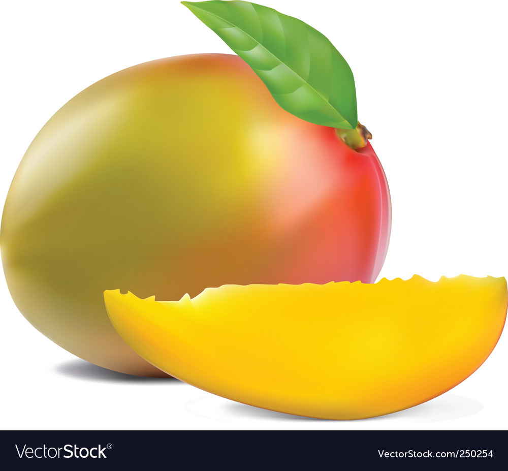 Fresh mango vector | Price: 3 Credit (USD $3)