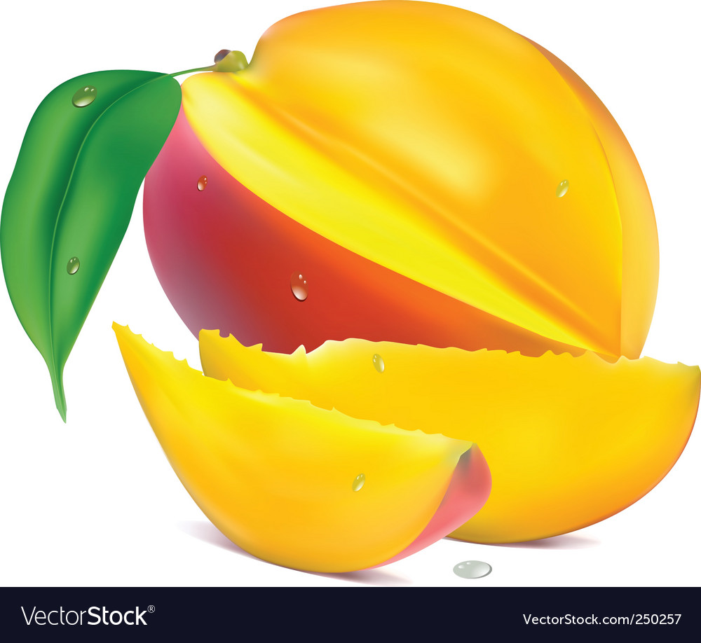 Mango with section vector | Price: 3 Credit (USD $3)