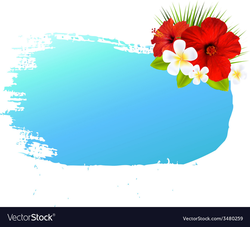 Summer banner blot for design vector | Price: 1 Credit (USD $1)