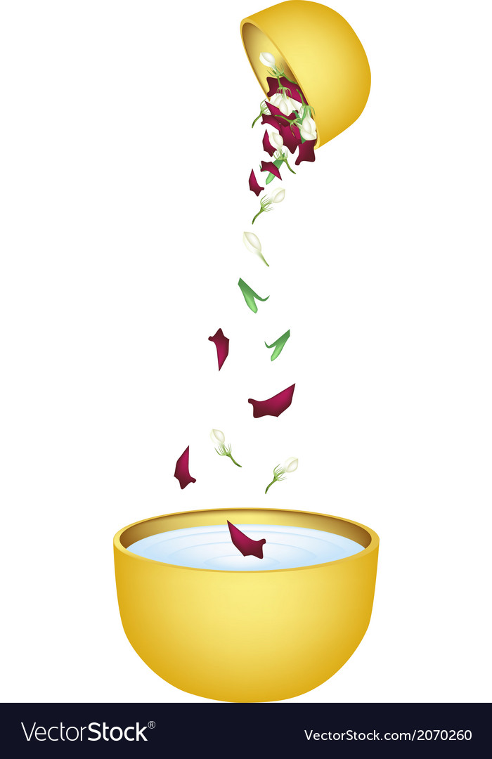 Water with flower corolla in bowl for songkran vector | Price: 1 Credit (USD $1)