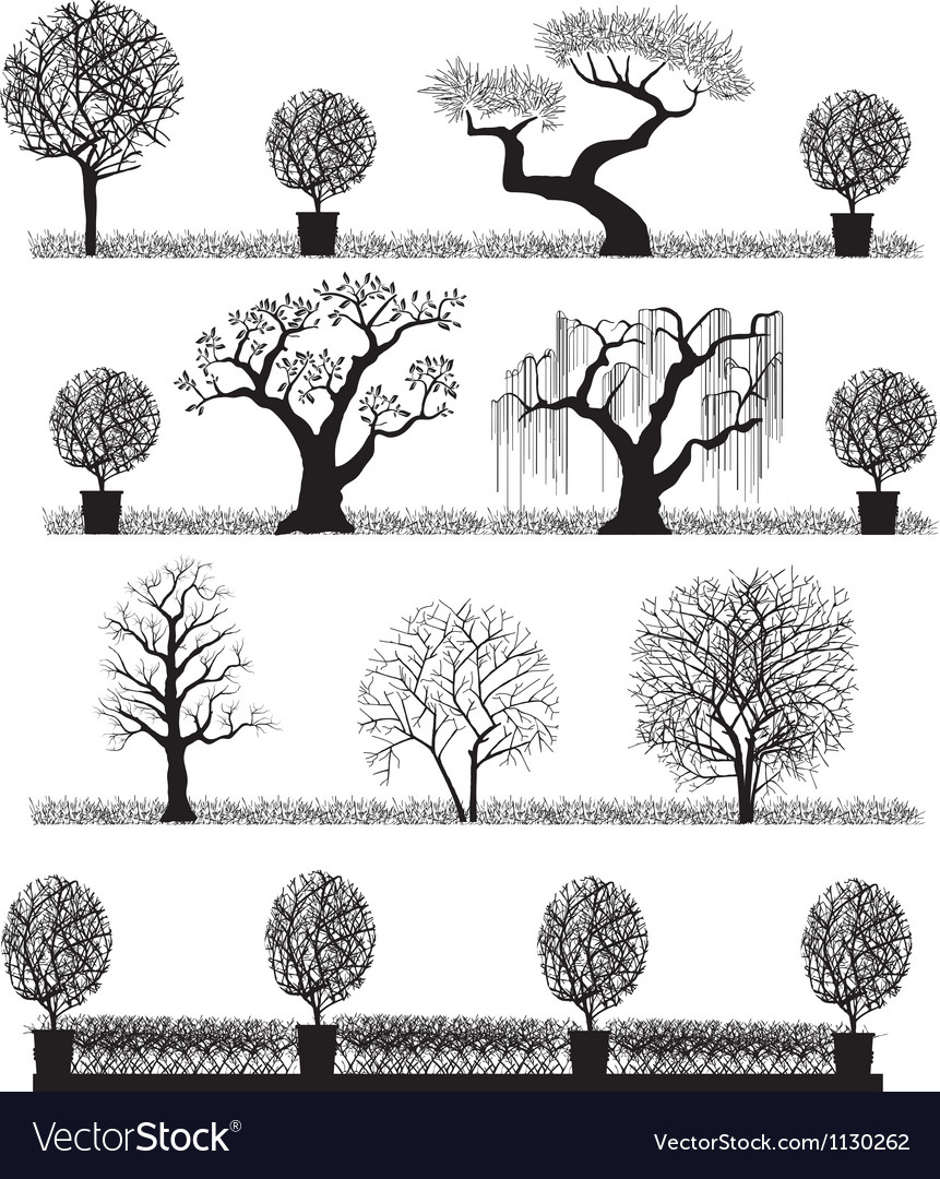 Silhouette of trees vector | Price: 1 Credit (USD $1)