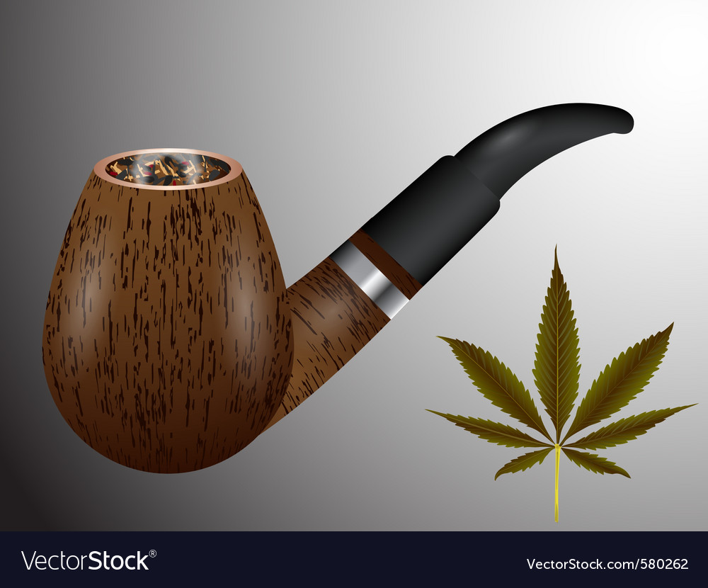 Smoking pipe vector | Price: 3 Credit (USD $3)