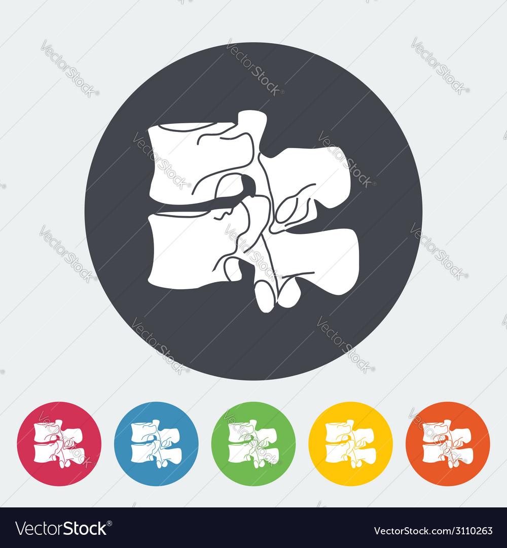 Anatomy spine icon vector   Price: 1 Credit (USD $1)