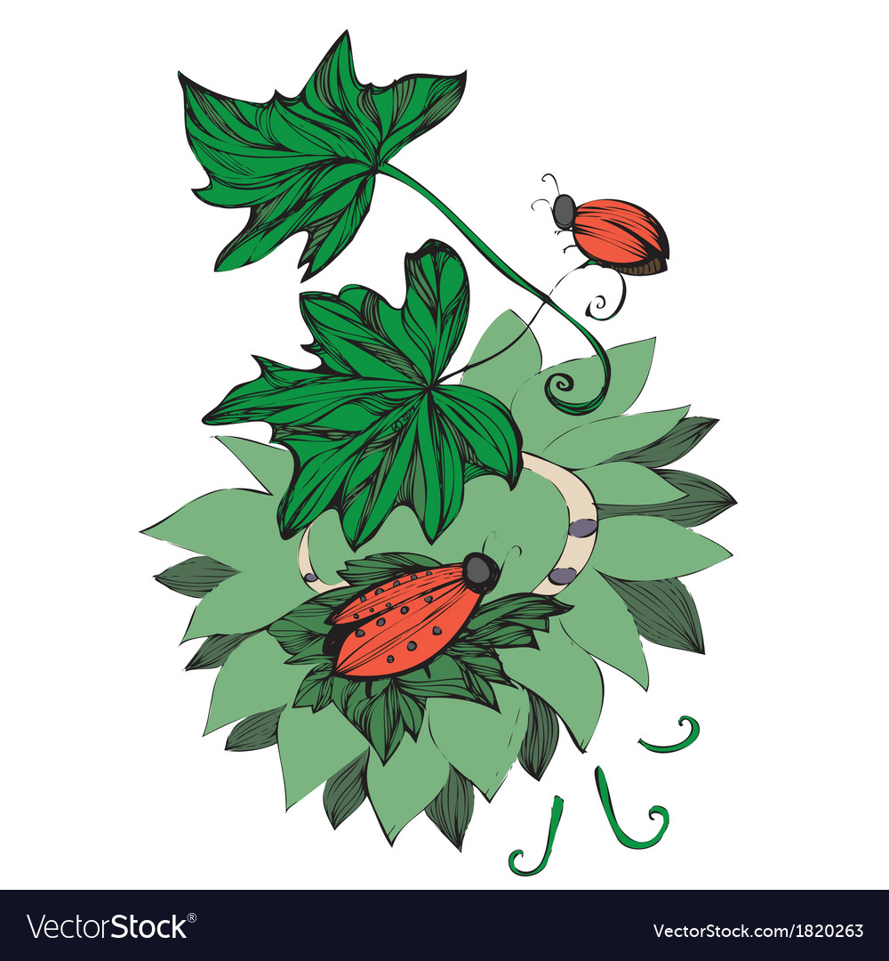Beetles crawling on leaves vector | Price: 1 Credit (USD $1)