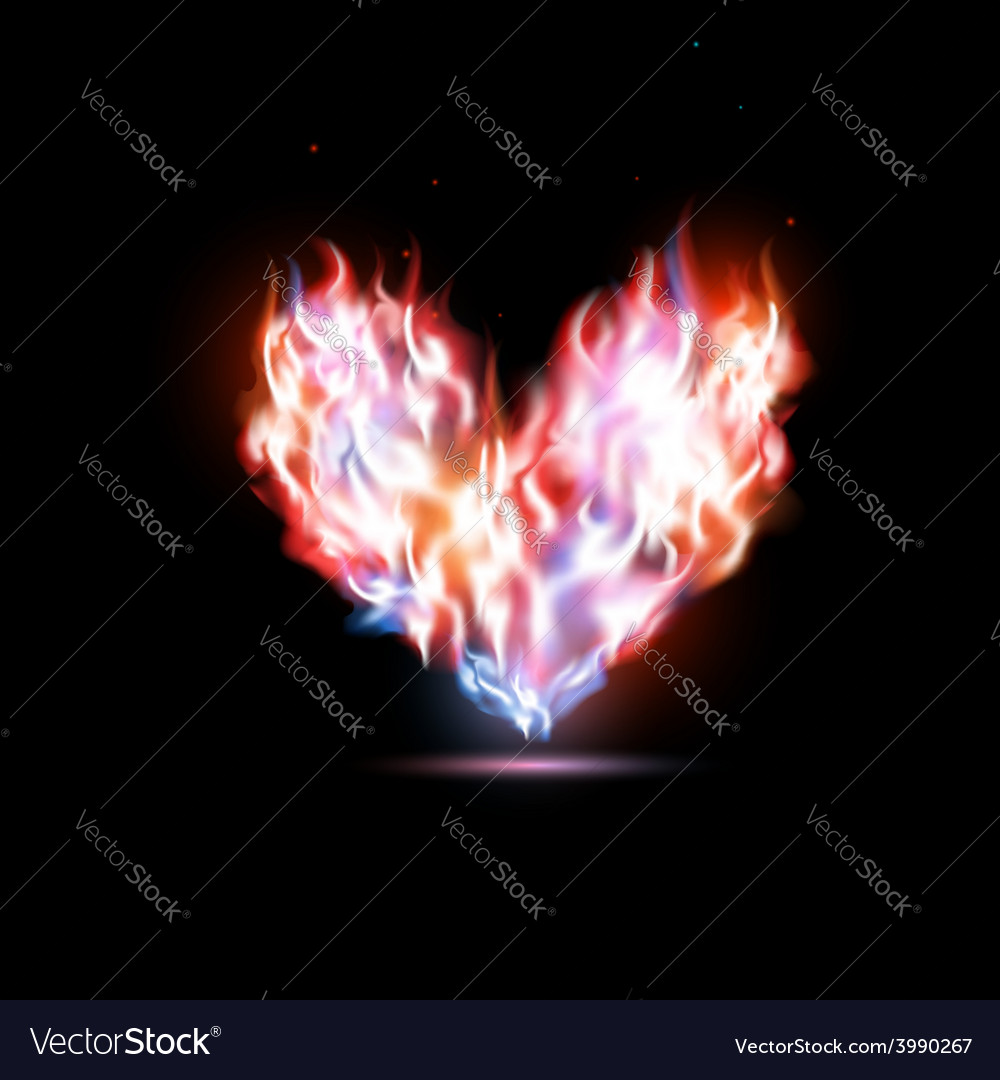 Human heart in flames vector | Price: 1 Credit (USD $1)