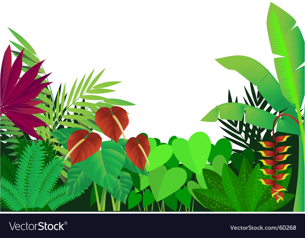 Forest vector | Price: 1 Credit (USD $1)