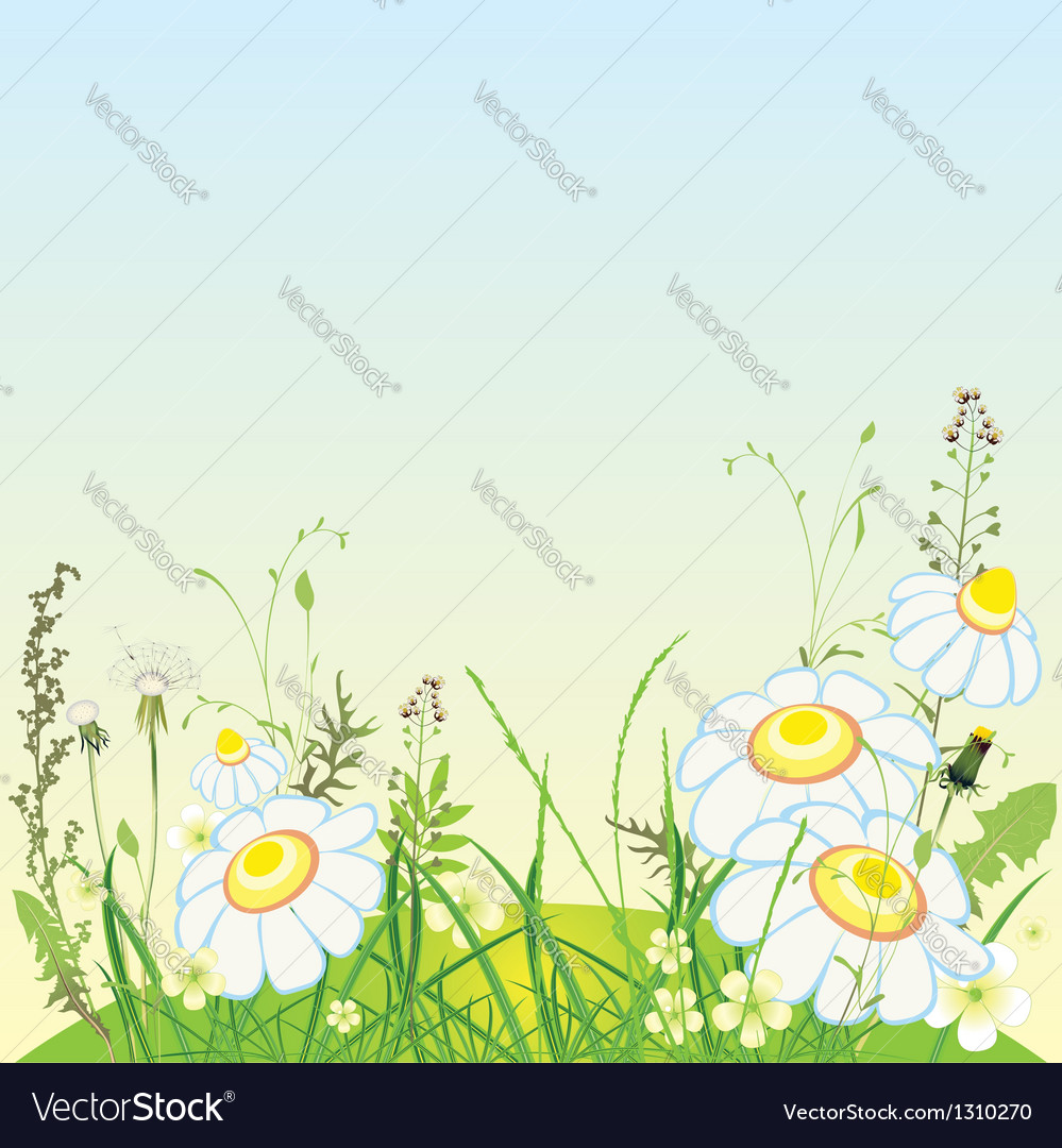 Green landscape flowers and grass meadow vector | Price: 1 Credit (USD $1)