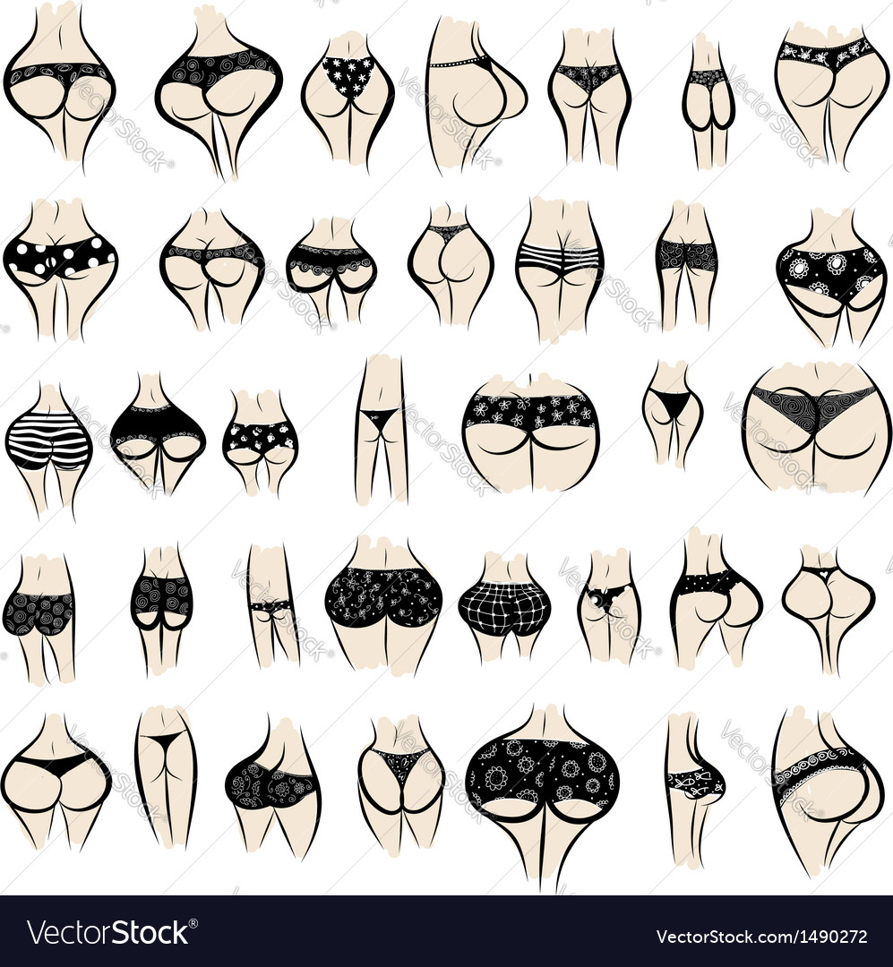 Collection of sexy female buttocks in panties vector   Price: 1 Credit (USD $1)