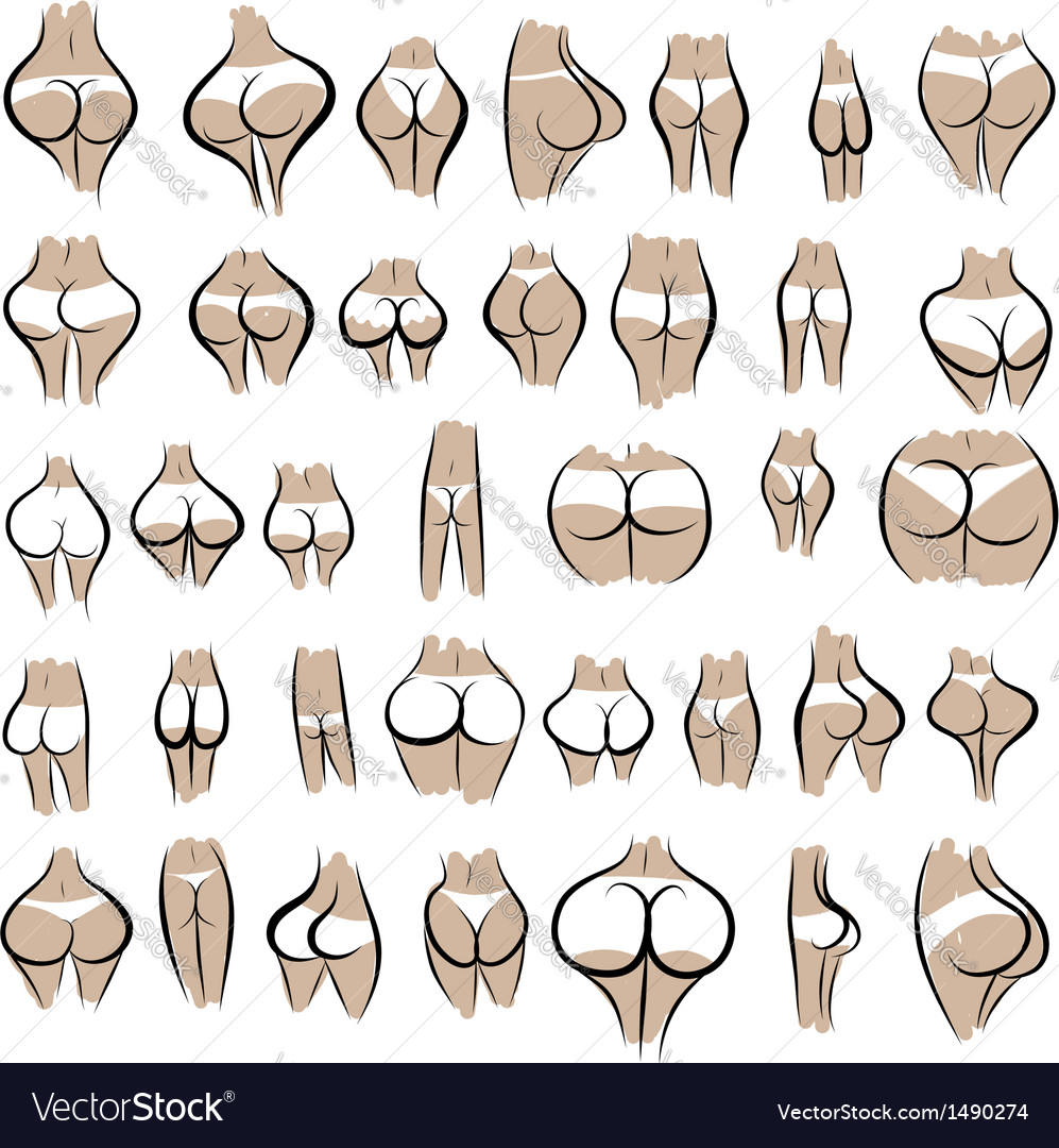 Collection of sexy female buttocks in panties vector | Price: 1 Credit (USD $1)