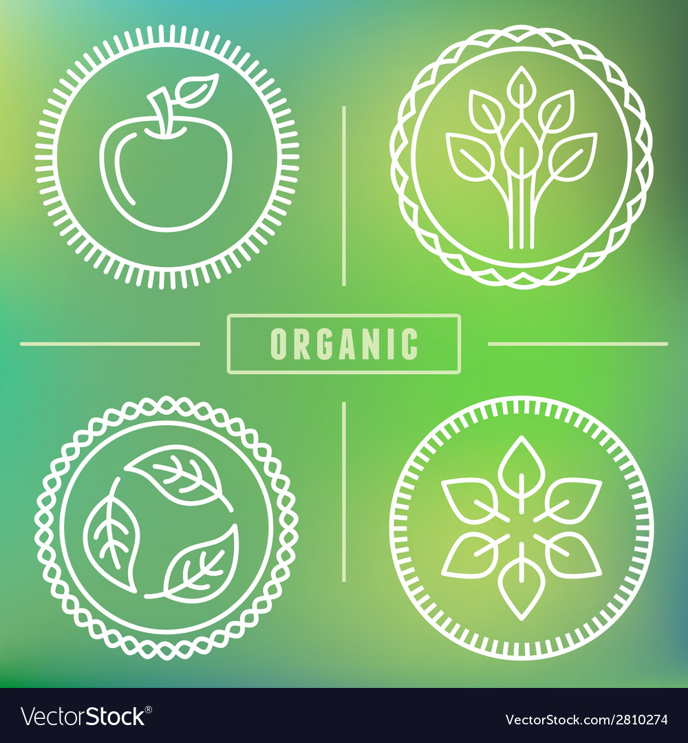 Organic icons vector | Price: 1 Credit (USD $1)