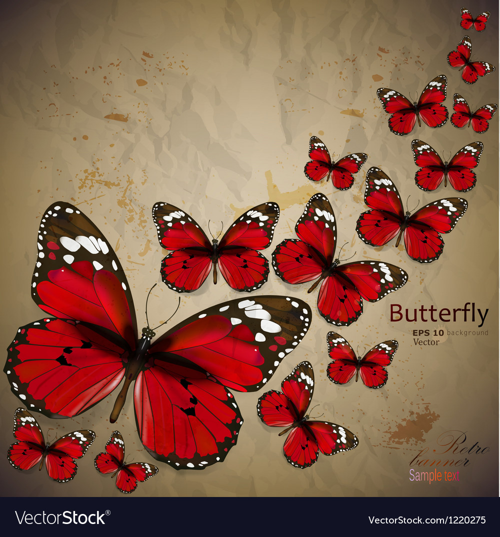 Colorful vintage background with butterfly grunge vector | Price: 1 Credit (USD $1)