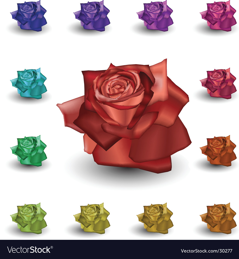Roses vector | Price: 1 Credit (USD $1)