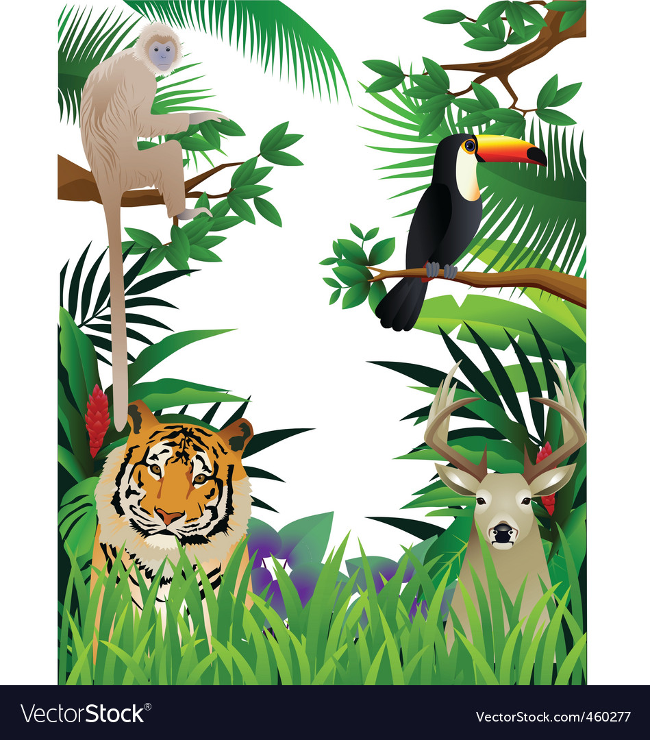 Wild animal vector | Price: 3 Credit (USD $3)