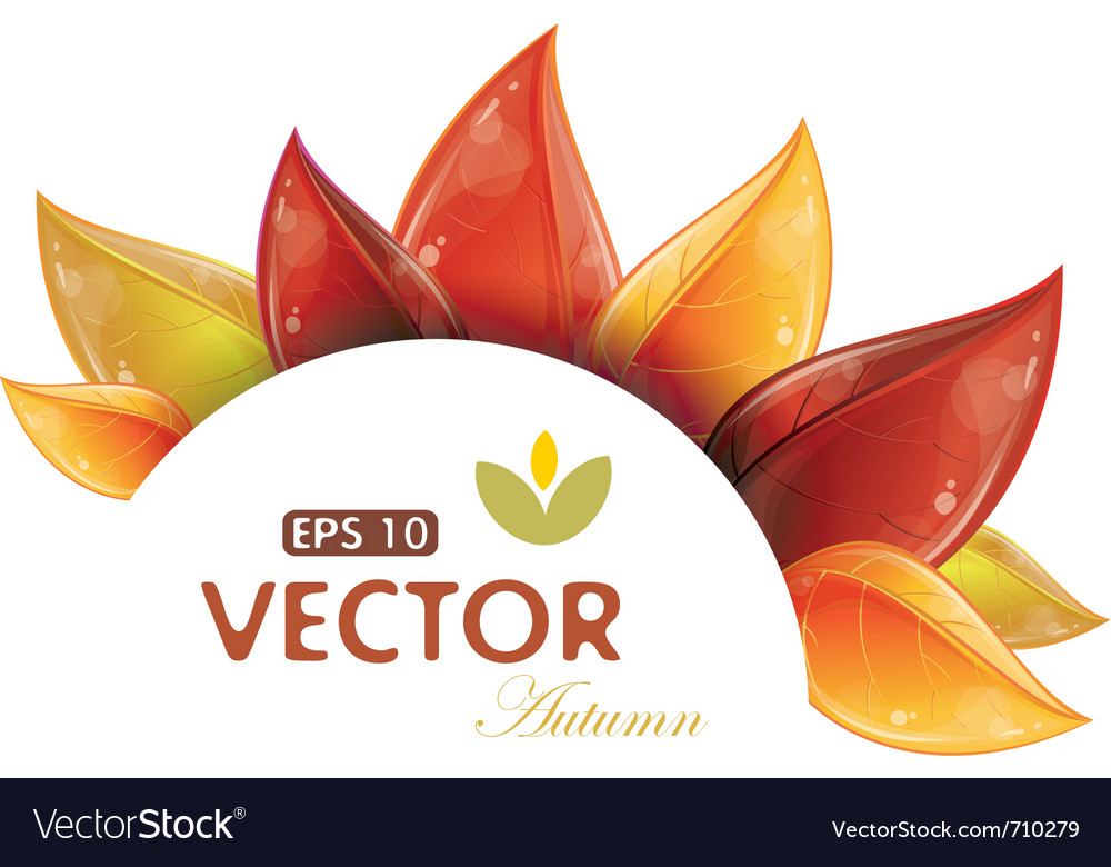 Autumnal leaves design vector | Price: 1 Credit (USD $1)