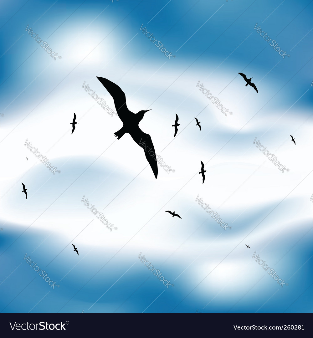Birds flying in sky vector | Price: 1 Credit (USD $1)