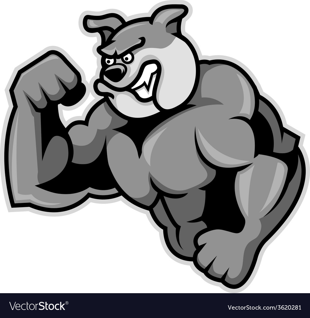 Bulldog muscle vector | Price: 1 Credit (USD $1)