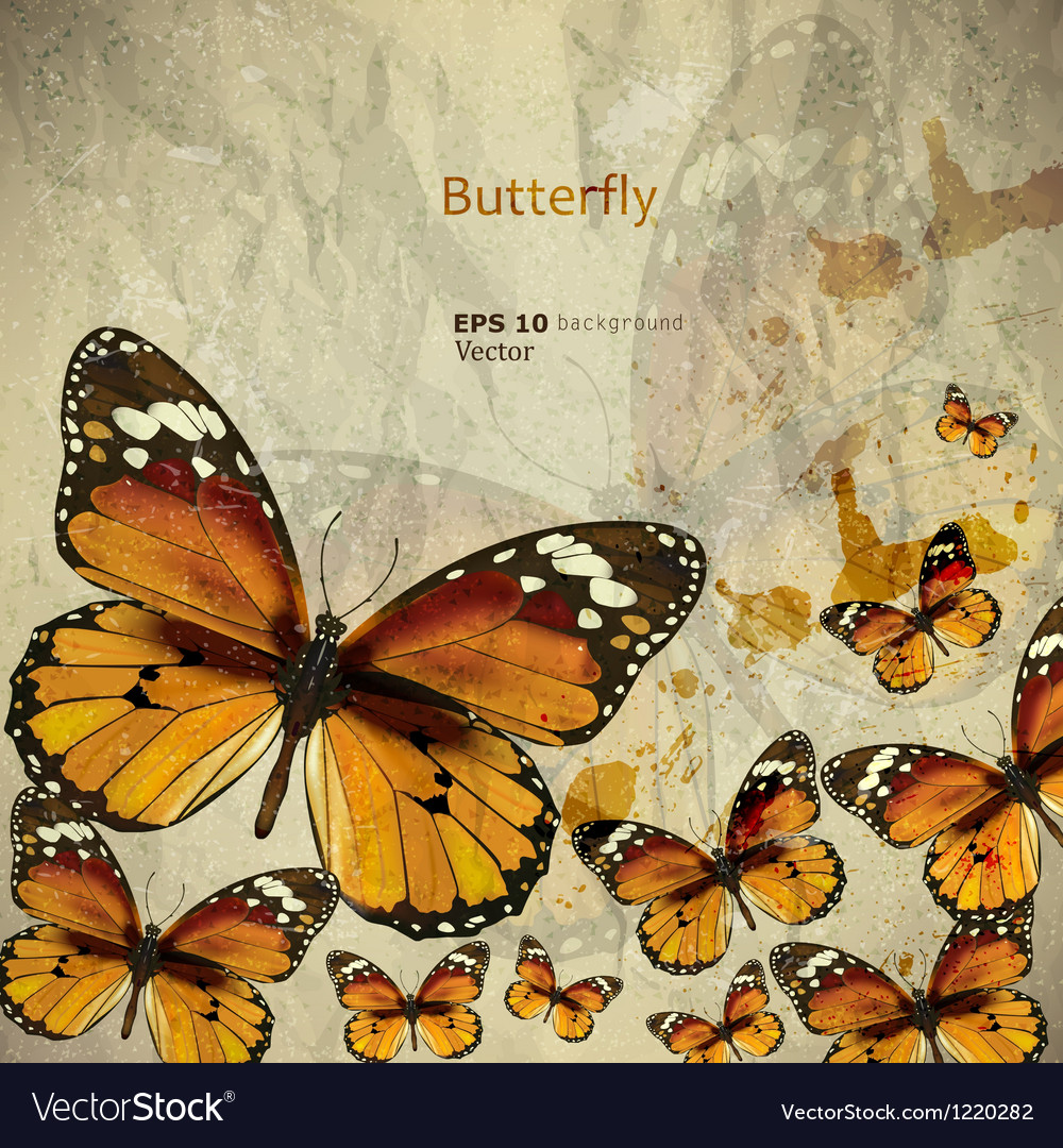Colorful vintage background with butterfly grunge vector   Price: 1 Credit (USD $1)