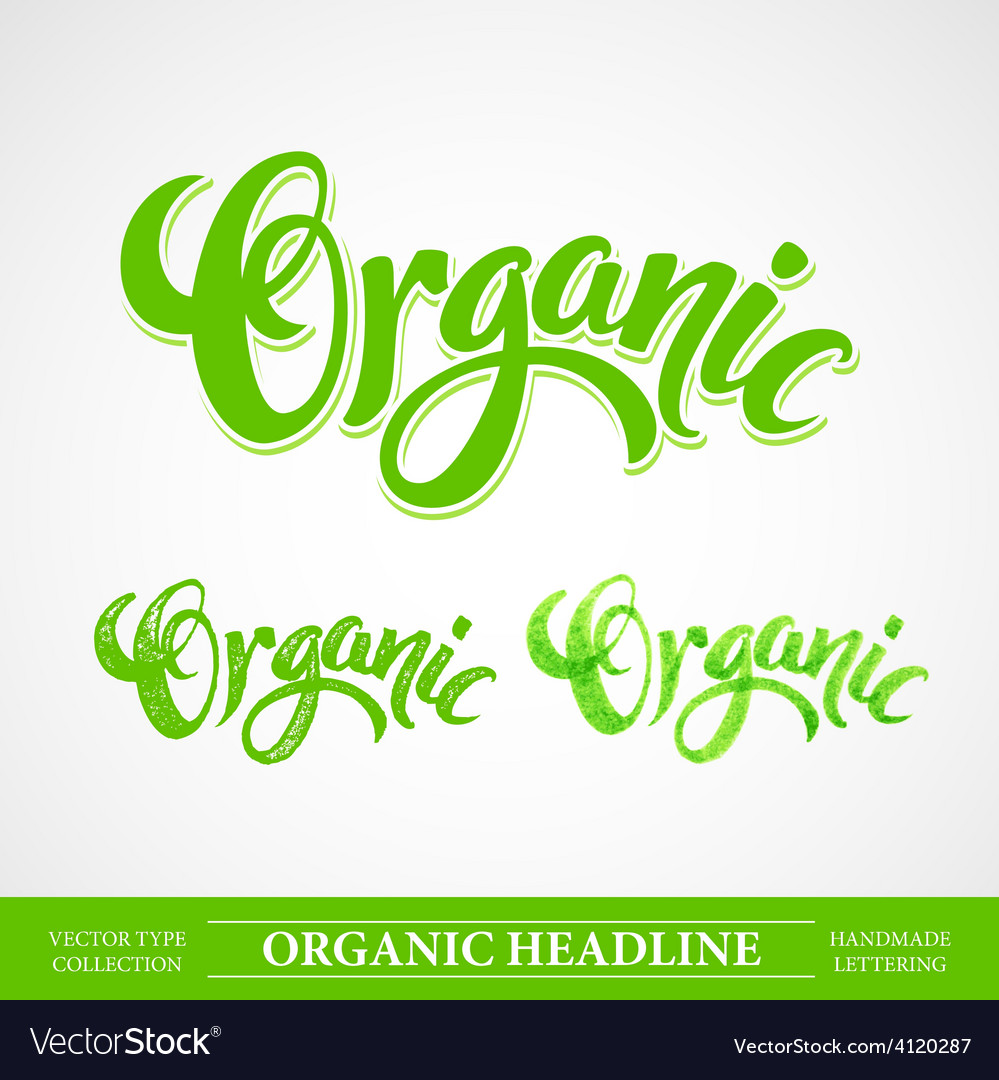 Title organic handmade lettering vector | Price: 3 Credit (USD $3)