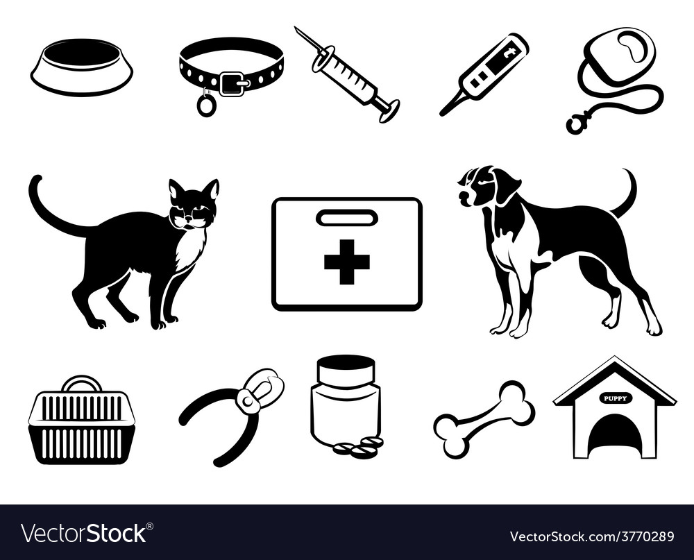 Pets veterinary medicine icons vector | Price: 1 Credit (USD $1)