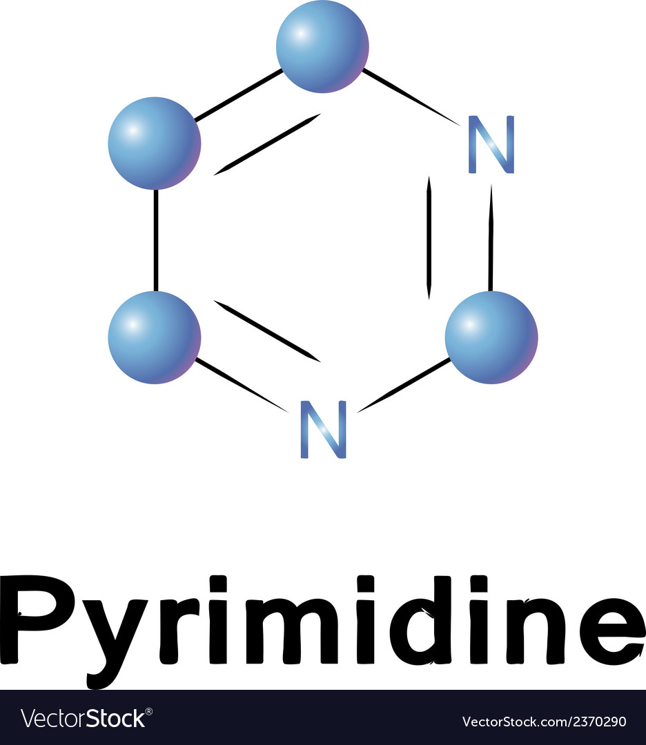 Pyrimidine vector | Price: 1 Credit (USD $1)