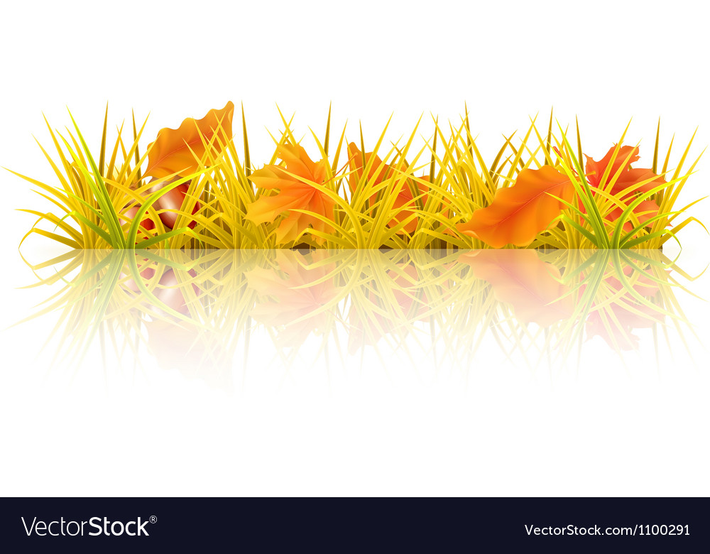 Autumn grass vector | Price: 1 Credit (USD $1)