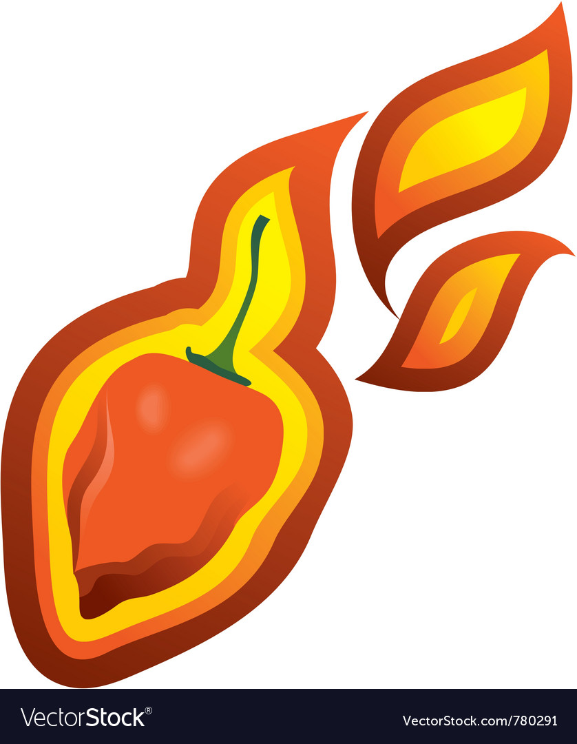 Chilli pepper habanero vector | Price: 1 Credit (USD $1)