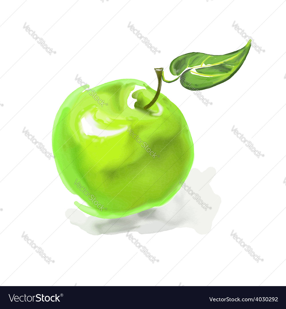 Apple hand drawn painted vector | Price: 1 Credit (USD $1)