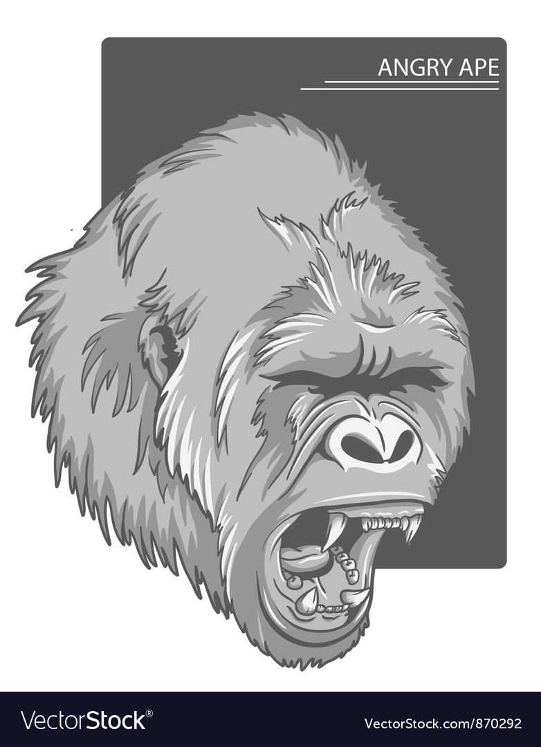 Raging gorilla vector | Price: 1 Credit (USD $1)