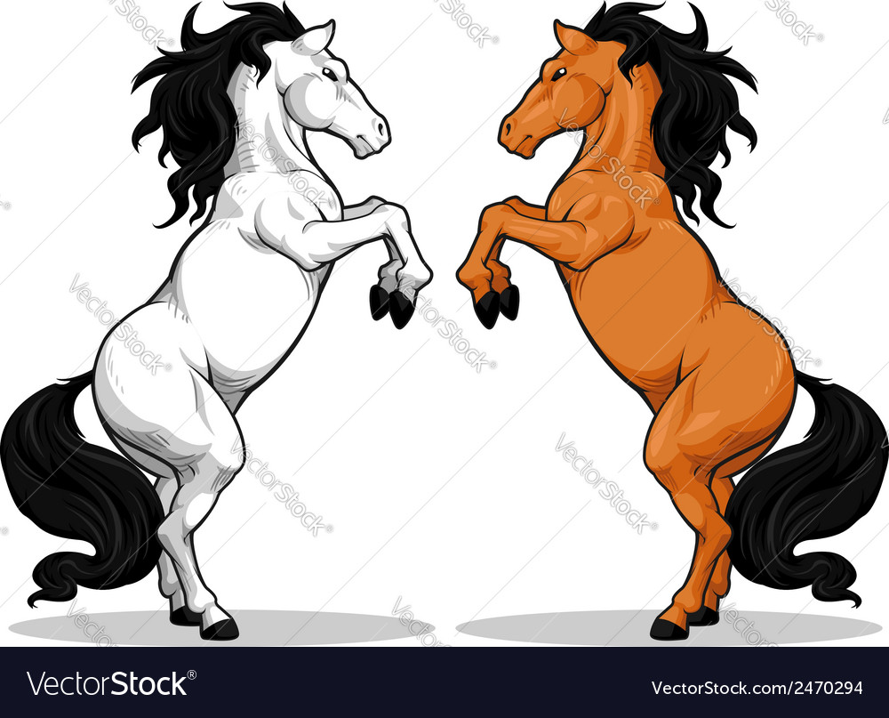 Prancing stallion or horse vector | Price: 1 Credit (USD $1)