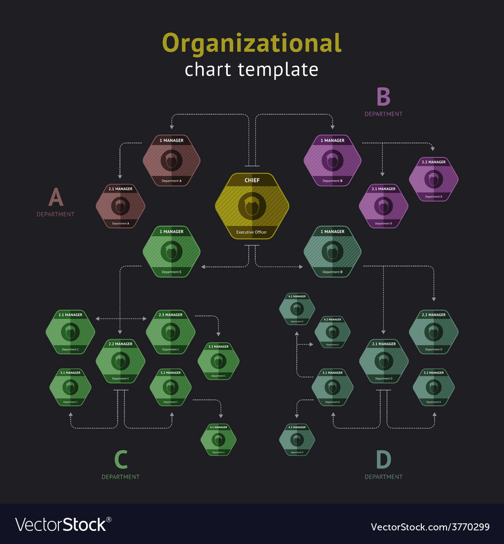 Organization chart vector | Price: 1 Credit (USD $1)