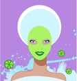 Beautiful woman spa facial mask vector