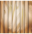 Wall panels with wood detailed texture vector