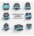 Premium quality label set in retro style vector