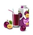 Plum juice set vector