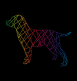 Labrador abstract vector